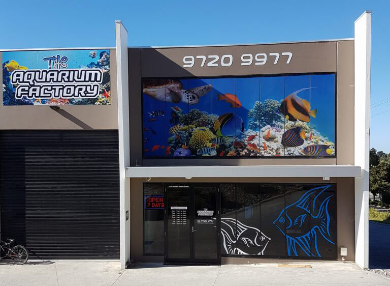 melbourne aquarium shop
